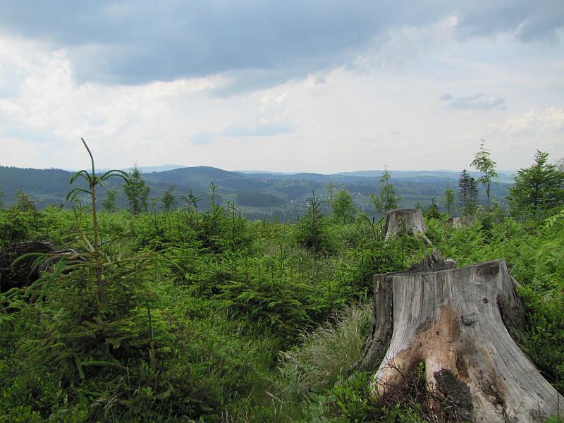 Widoki na południe z grzbietu nad Pietraszonką.
