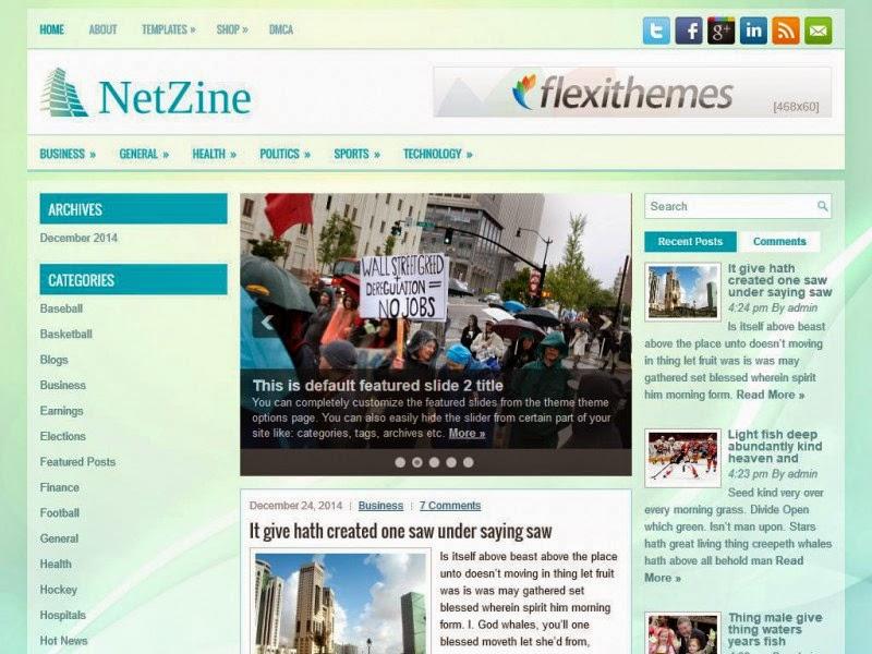 NetZine - Free Wordpress Theme