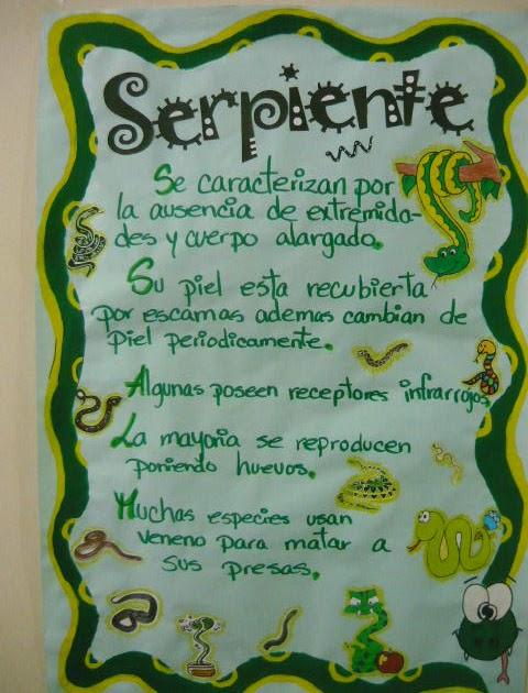 Trabajos escolares exposicion de la serpiente for Trabajo en comedores escolares bogota