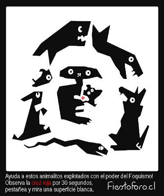 Imagen de una serie de animales que cuando se observa por un determinado momento genera la imagen latente en la retina del che guevara