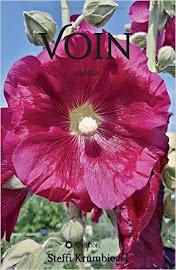 Cover: Voin - Hanna
