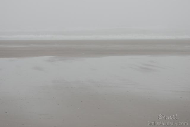 Coastline Dreamscape