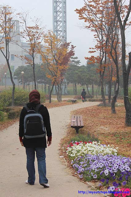 S.Korea (Nov 2010)