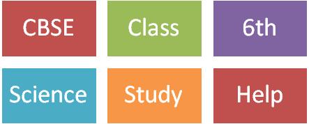 math worksheet : cbse pathshala class vi : Cbse Class 6 Maths Worksheets