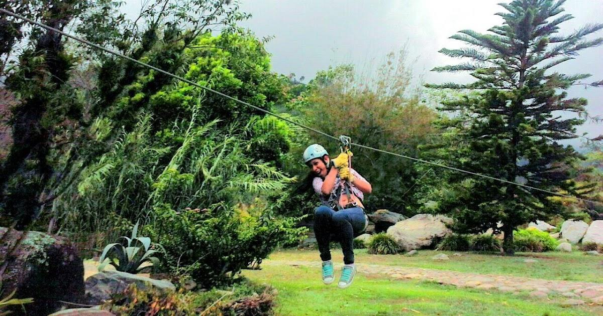 Mariana creativa fotos de mi viaje al estado de m rida en for Actividad de perros en el jardin botanico de caguas