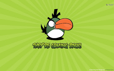#23 Angry Birds Wallpaper