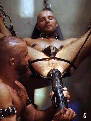 gay vild dick nyeste