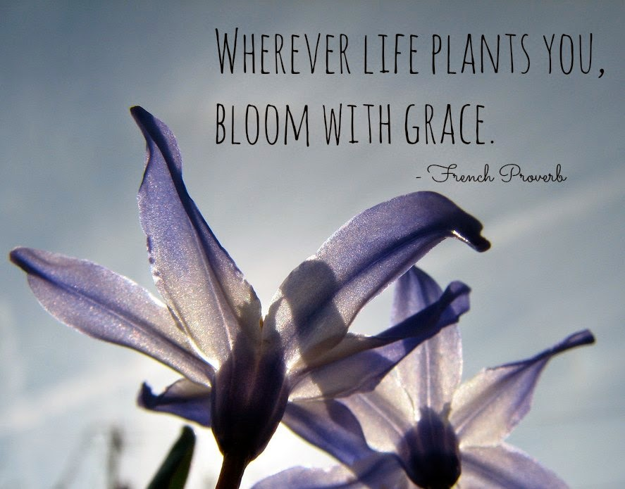 Wherever life plants you...
