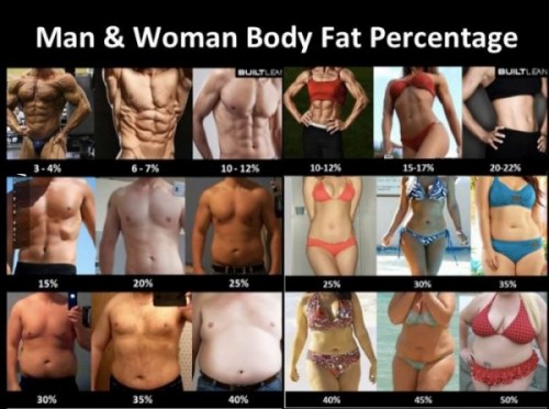Man and Woman Body Fat Percentage