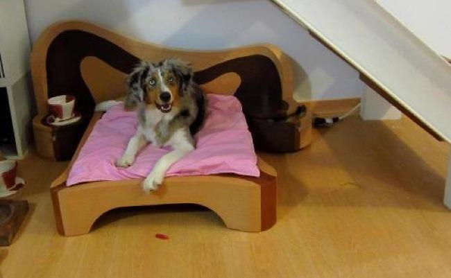 Dise o y decoracion de interiores guinet vilela rodriguez - Muebles para mascotas ...