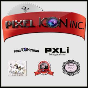 Welcome to Pixel Icon Inc.'s Blog!