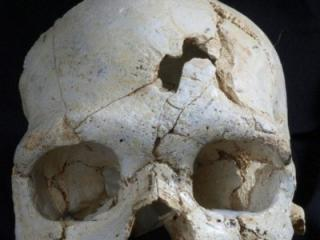 The first murder in history occurred in Atapuerca