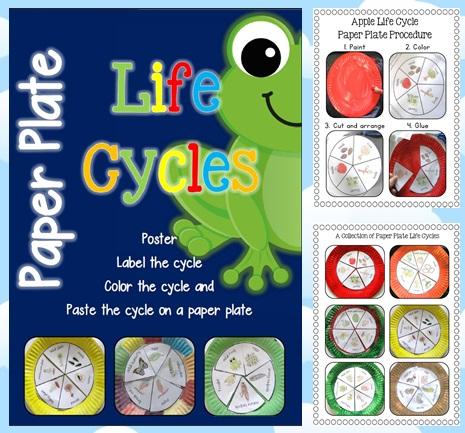http://www.teacherspayteachers.com/Product/Paper-Plate-Life-Cycles-Frog-Pumpkin-Apple-Sunflower-and-more-877497