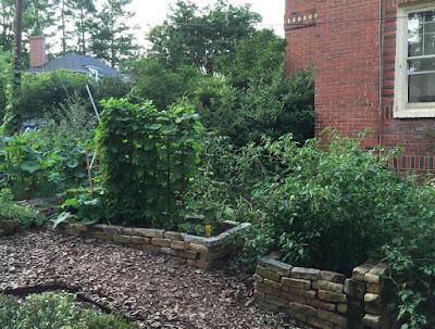http://naturalgardening.blogspot.com/2015/07/an-exuburant-front-vegetable-garden.html
