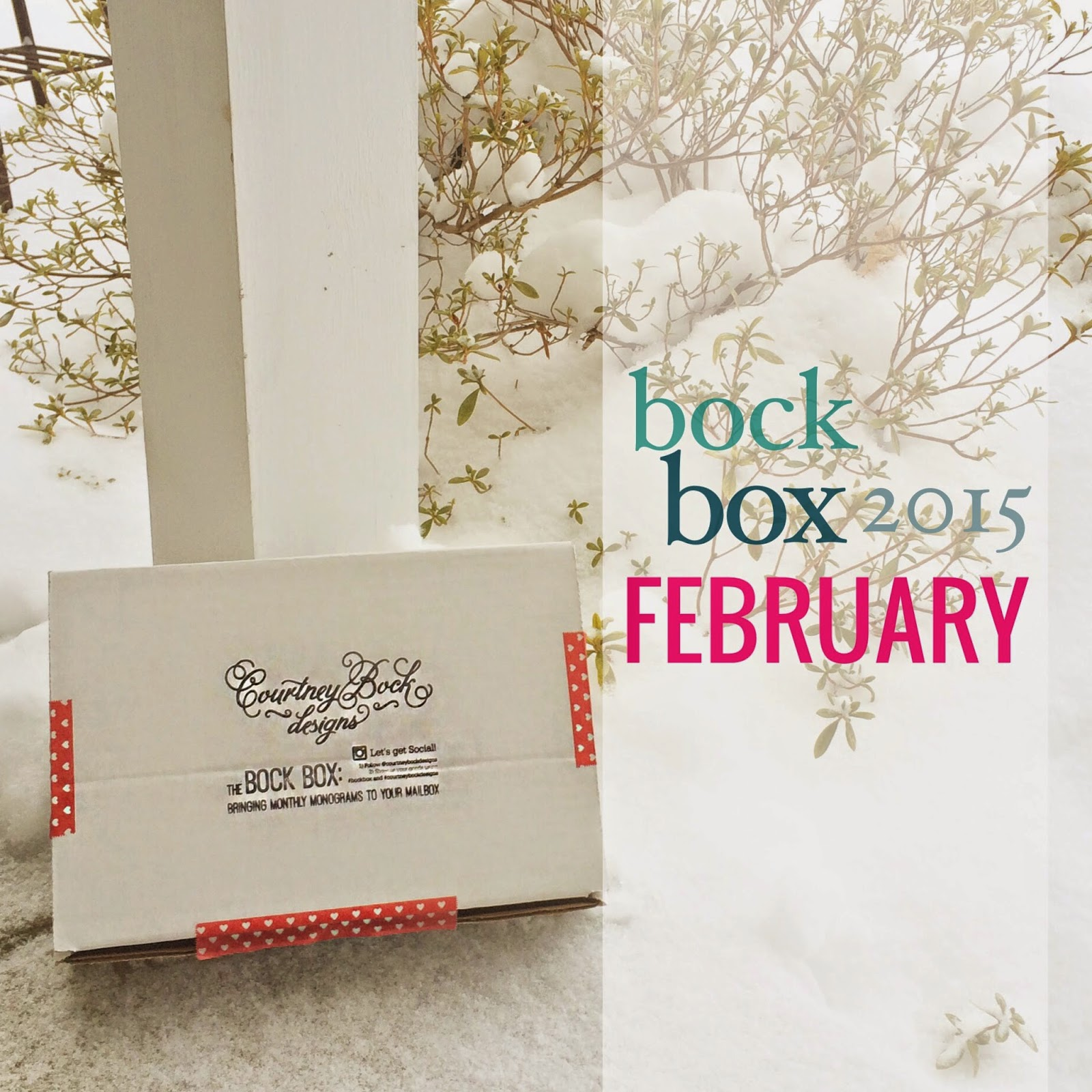 What's In My Bock Box? February 2015