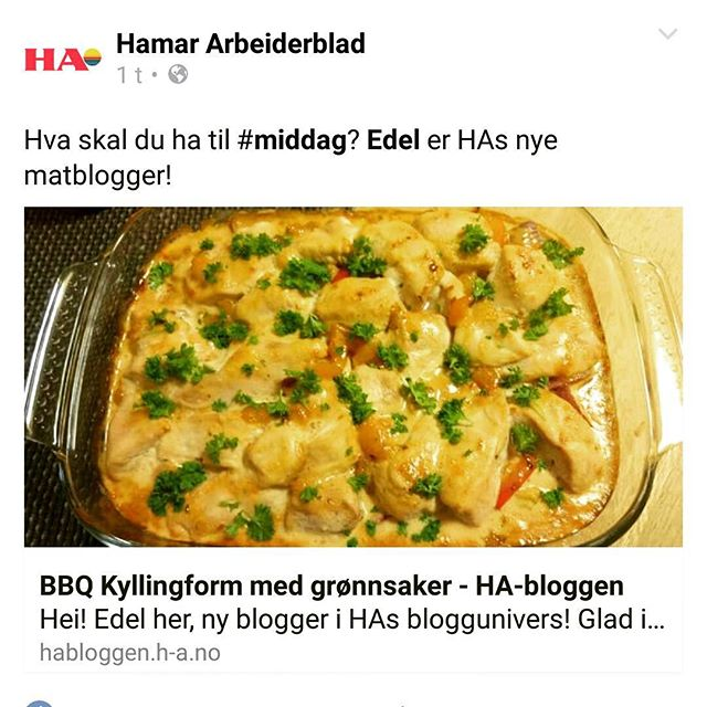HAs nye matblogger !