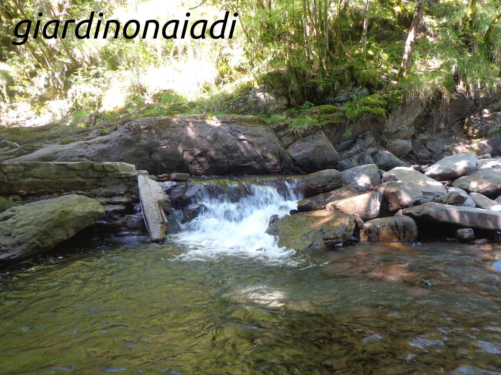 Cascata Da Giardino Moderna : Il giardino delle naiadi cascate e ruscelli