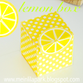 DIY lemon box: