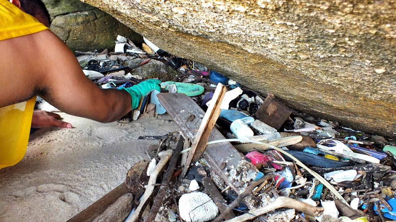 Até oitenta por cento dos resíduos coletados pelos voluntários nas praias da Baixada Santista é composto por plástico.