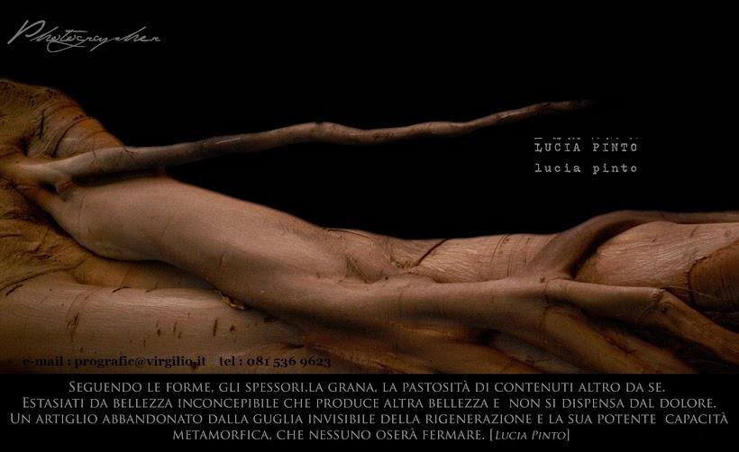Lucia Pinto Photographer