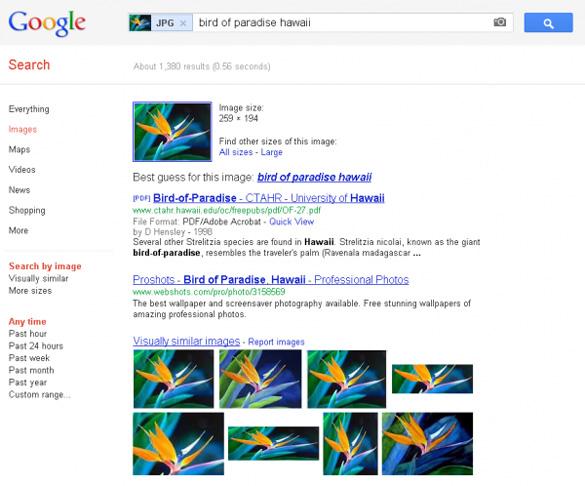 "Google incerca sa ofere raspunsuri mai ""inteligente"" la cautarile dupa imagini"