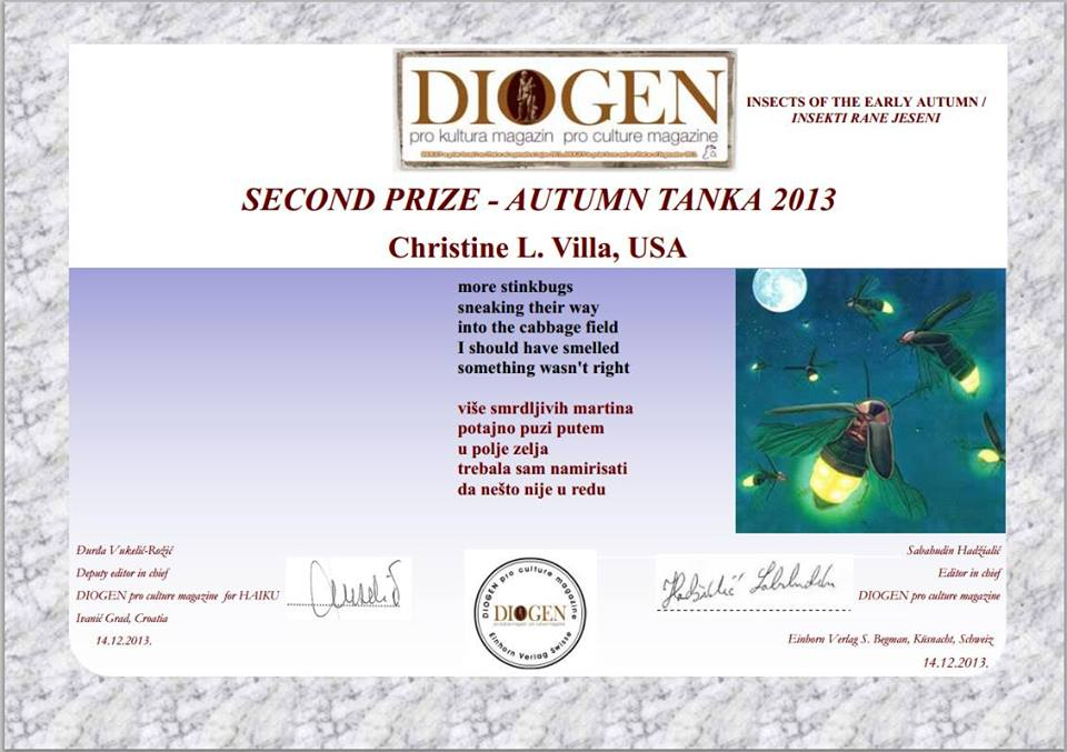 2nd Place, Diogen 2013