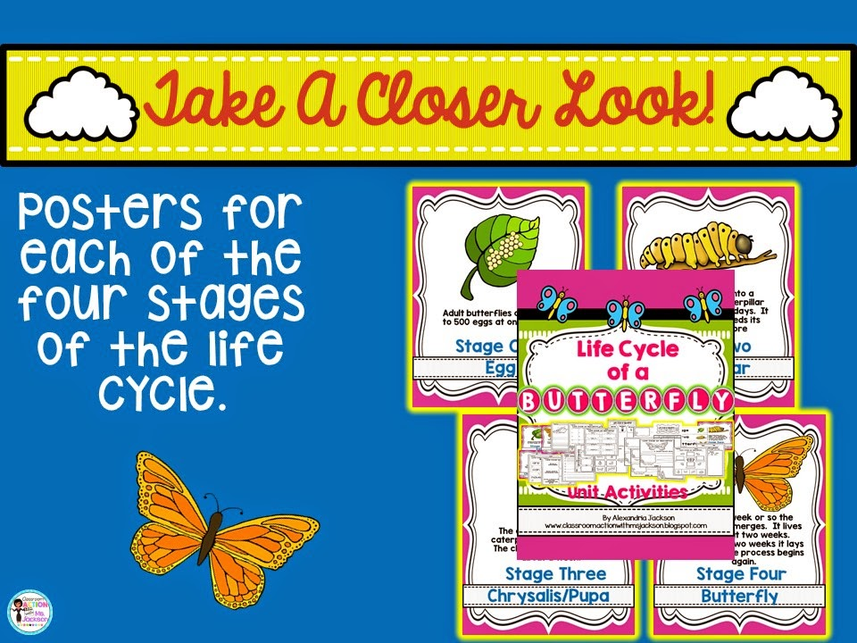 https://www.teacherspayteachers.com/Product/Butterfly-Life-Cycle-1804217