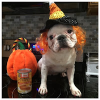 http://daisythefrenchbulldog.blogspot.com/2015/09/tastytuesday-dog-friendly-cinnamon.html