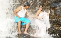 Heroine HariPriya Hot White Saree Wallpapers