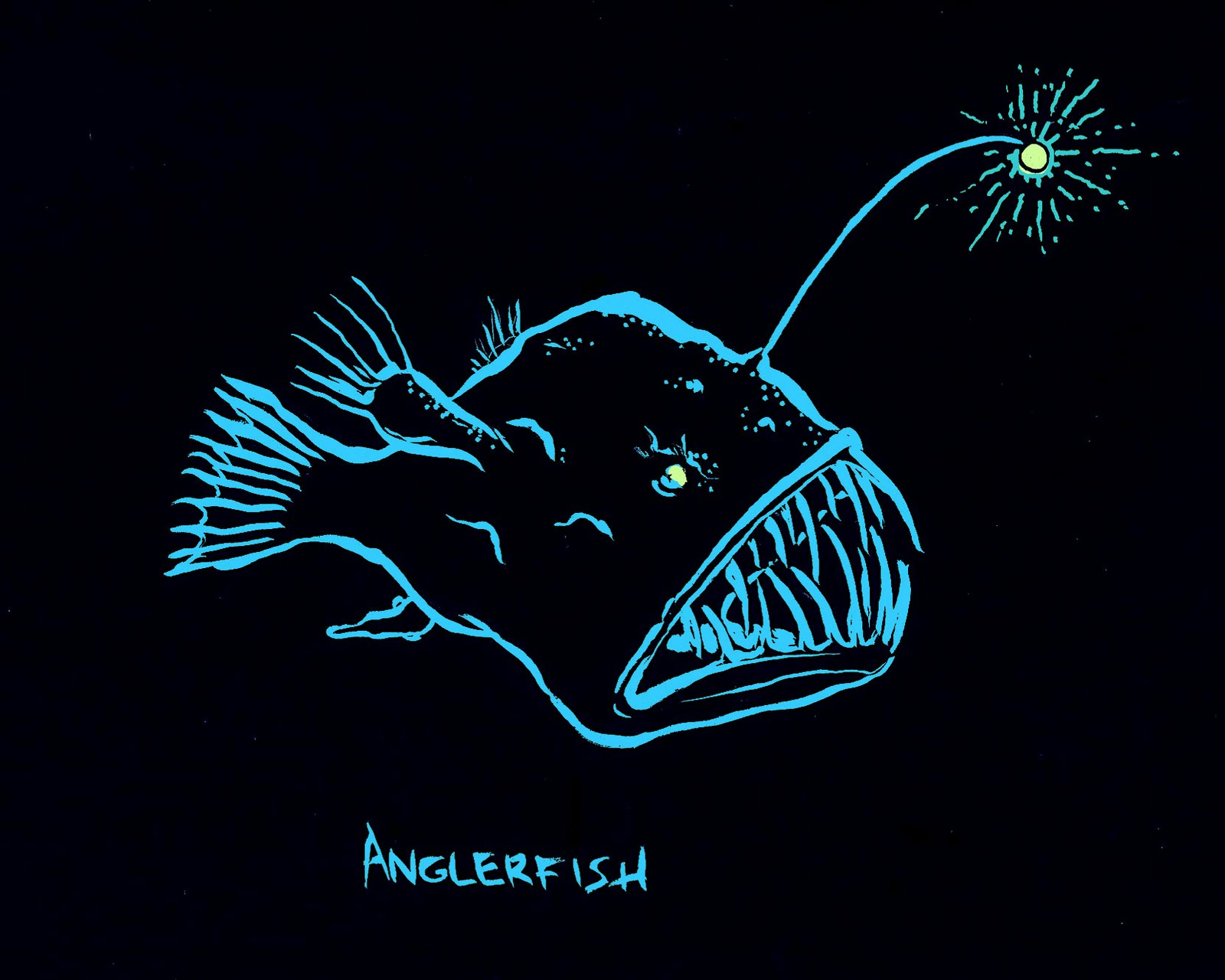 Design brief dragonfish offshore logo stationary a for Angler fish light