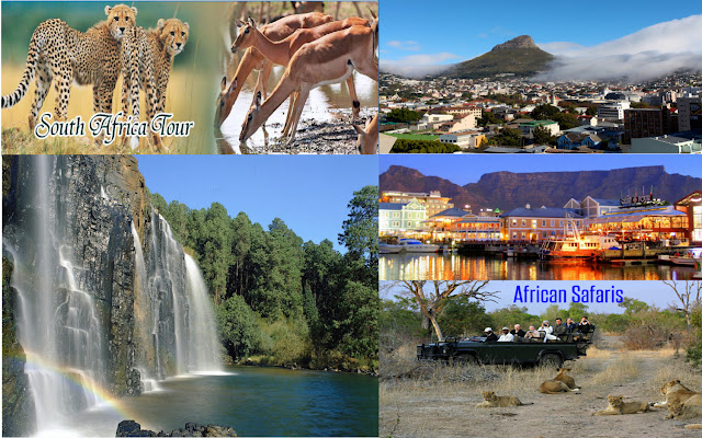 http://www.flamingotravels.co.in/international-tour-packages/africa/south-africa/single/south-africa-tour-packages.html