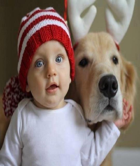 Un bébé mignon avec son chien
