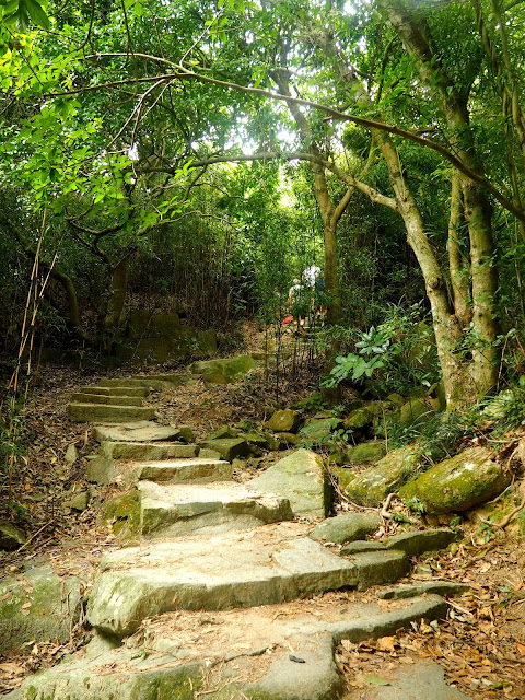 Forest path entrance to Dragon's Back Hiking Trail from Shek O Road, Hong Kong Island