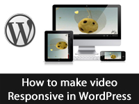 How to Make video Responsive in WordPress