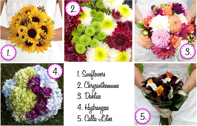 De lovely affair top 10 must have flowers for your fall wedding 1 junglespirit Images