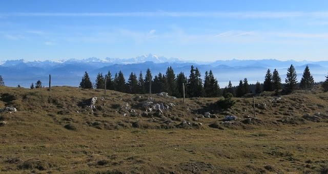 Mont-Tendre - Vue sur les Alpes et le Mont-Blanc au loin