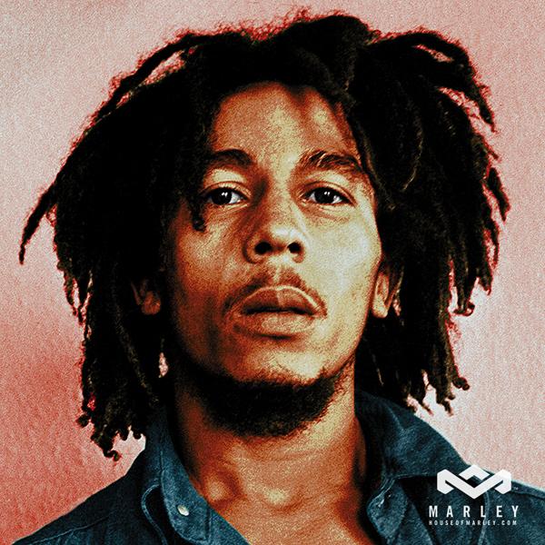 Naturally Nita Recognizable Naturals Bob Marley