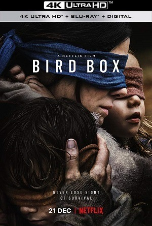 Caixa de Pássaros - Bird Box 4K Filmes Torrent Download capa