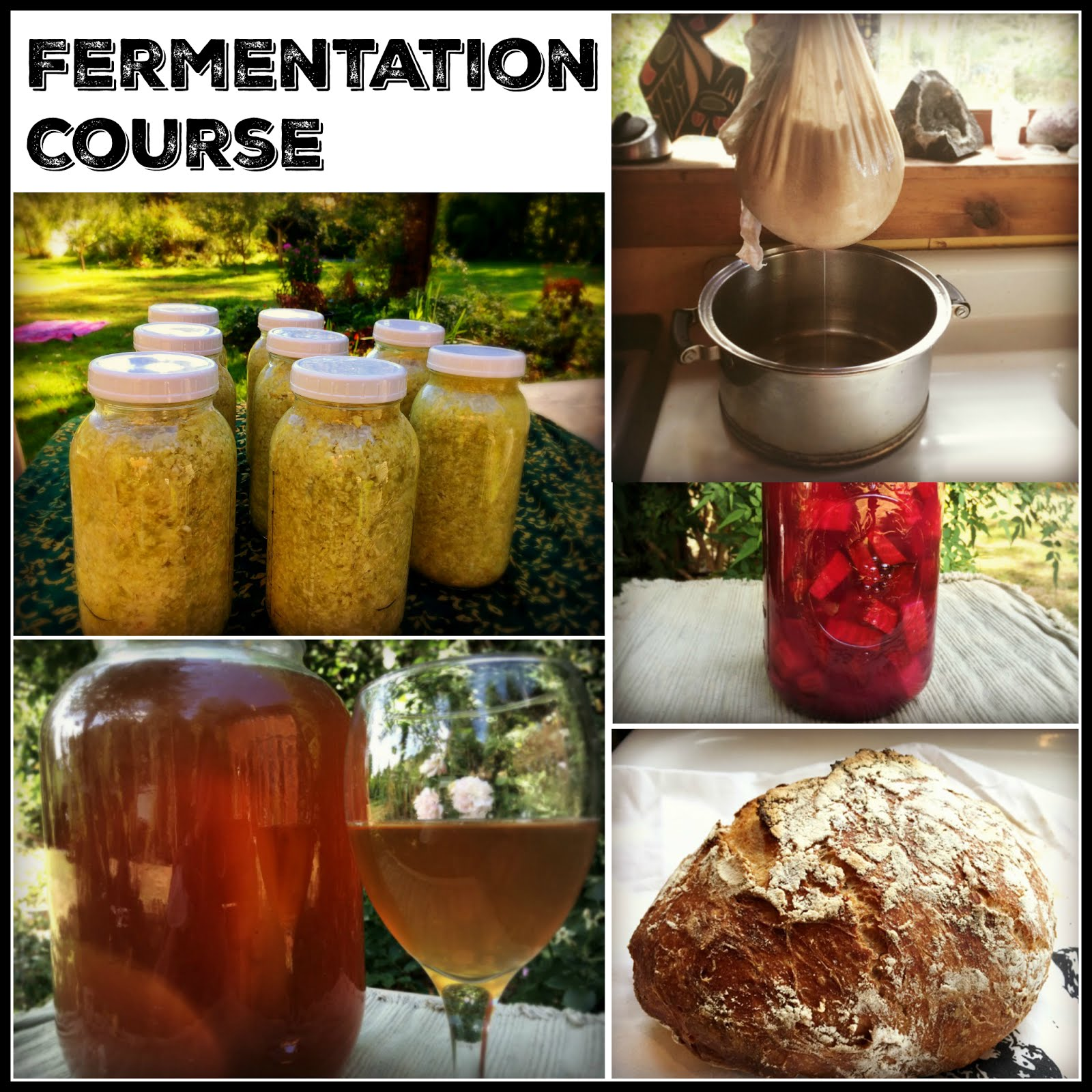 Coming soon - Online fermentation course