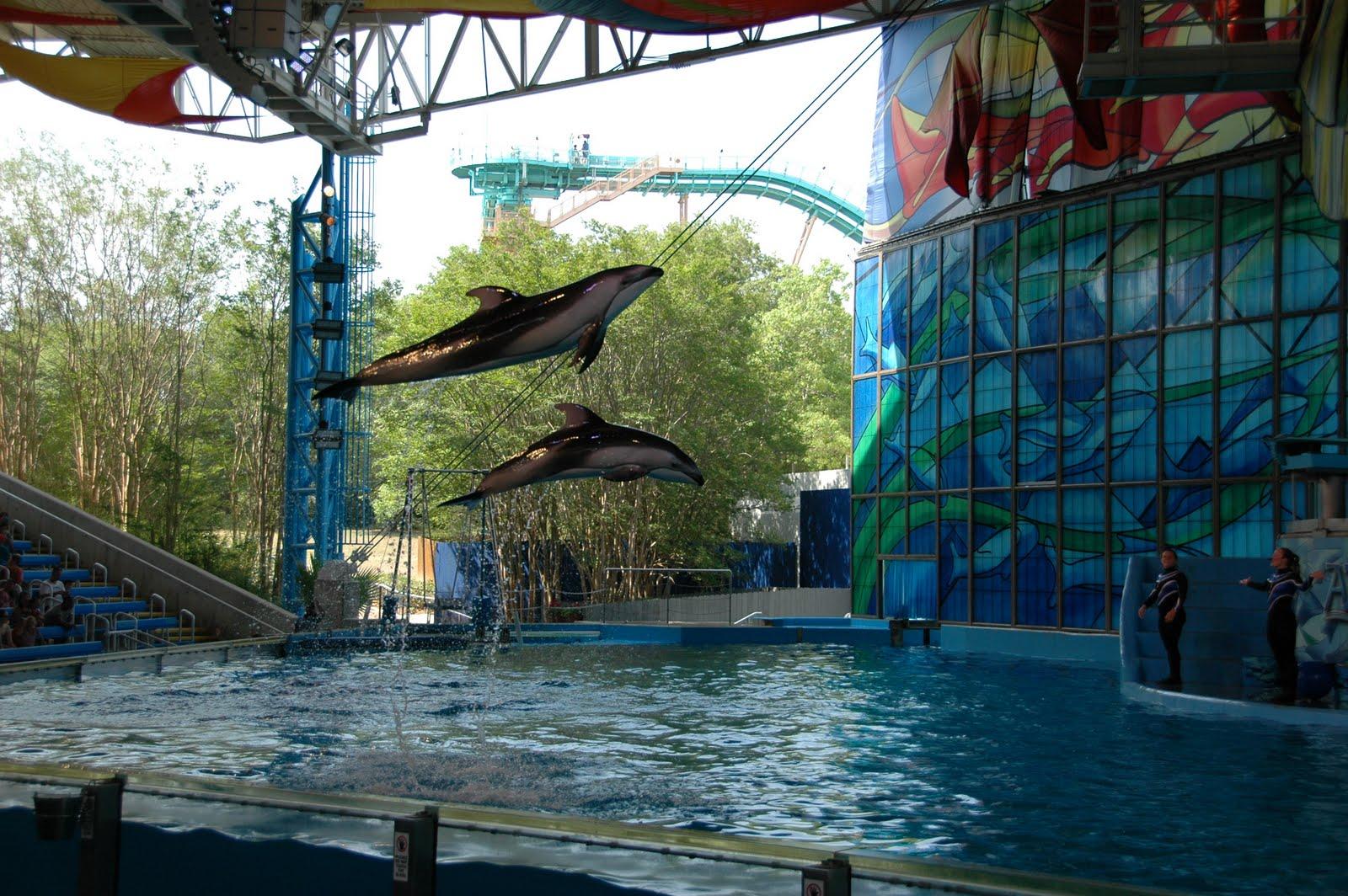 whatVLthinks SeaWorld San Antonio
