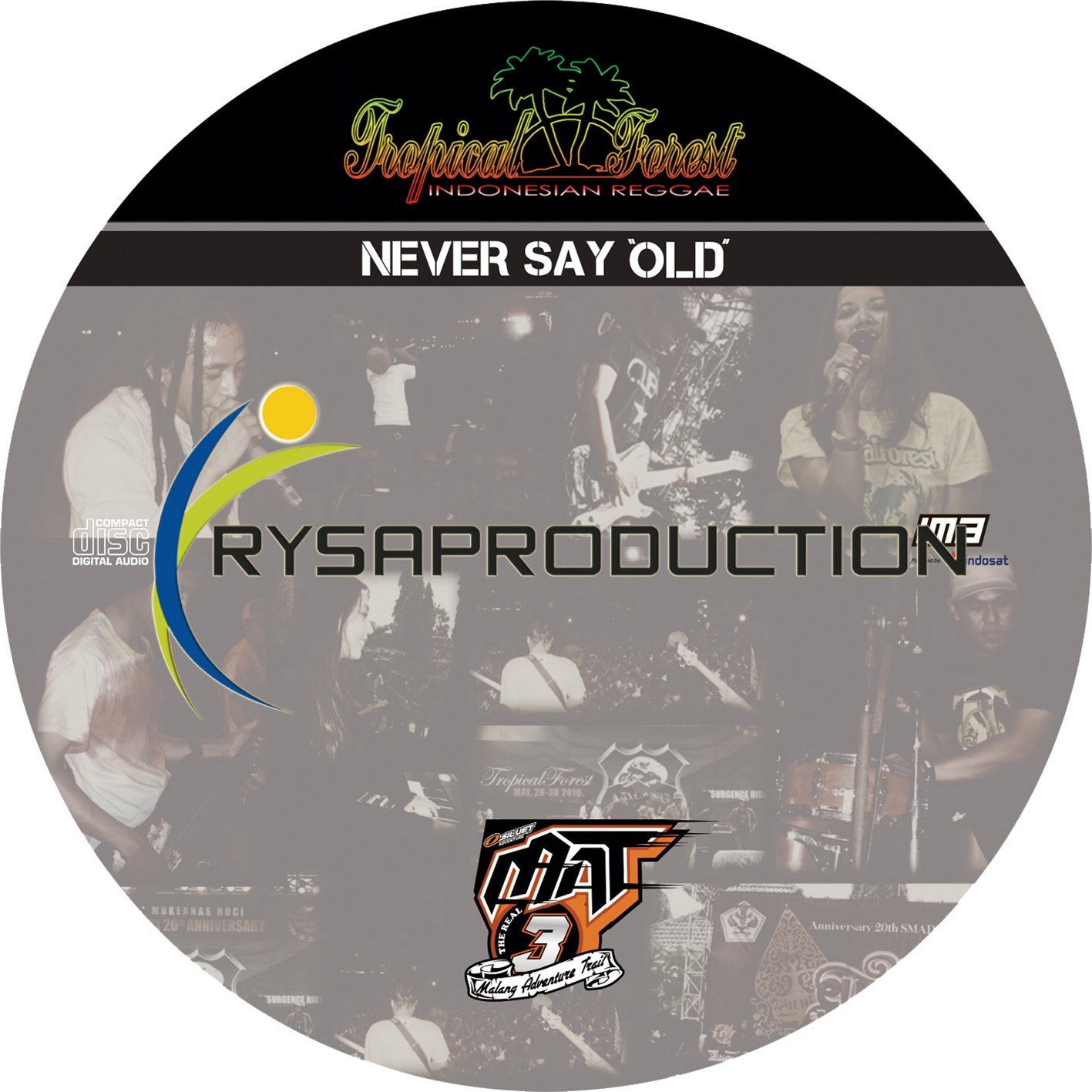 Never Say Old reggae