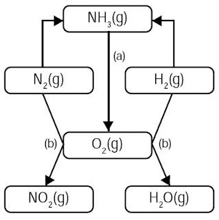reaksi perubahan amonia