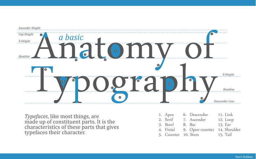 design practice typography workshop anatomy of type