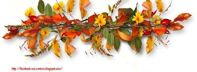 Couverture facebook HD feuilles d'automne