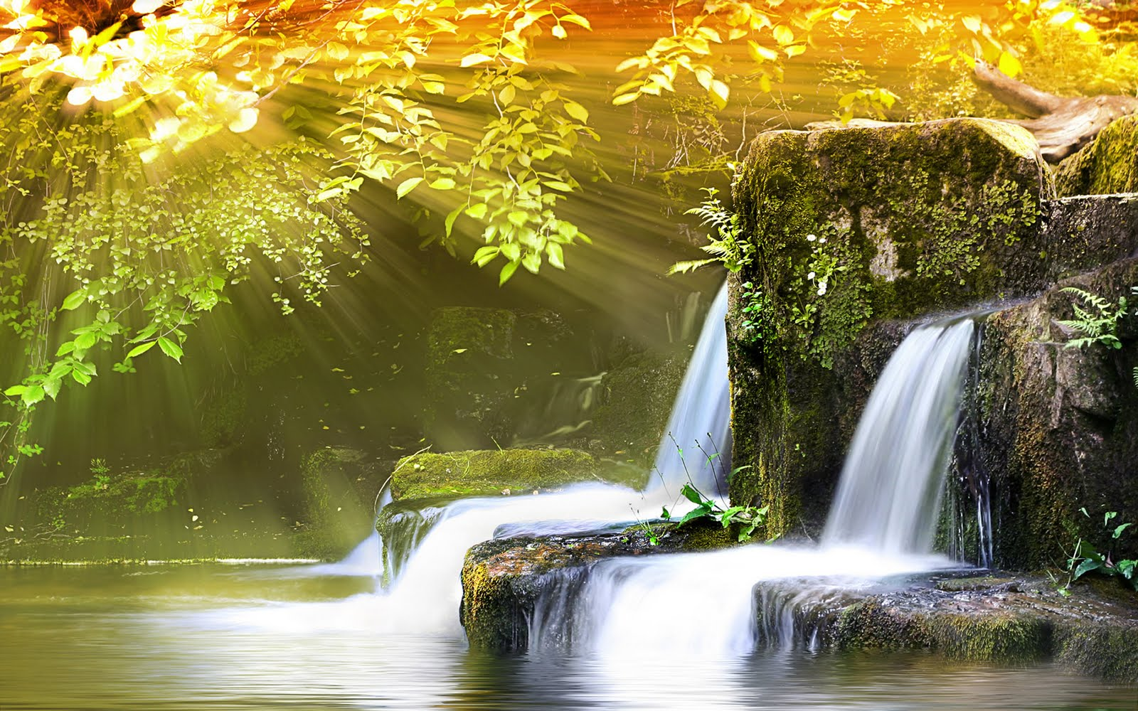 top nature wallpapers: Top Hd Nature Wallpapers