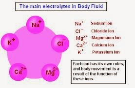 How to interpret laboratory data:electrolytes