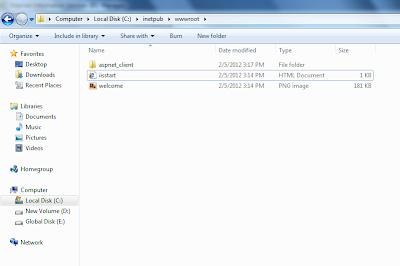 inetpub wwwroot files