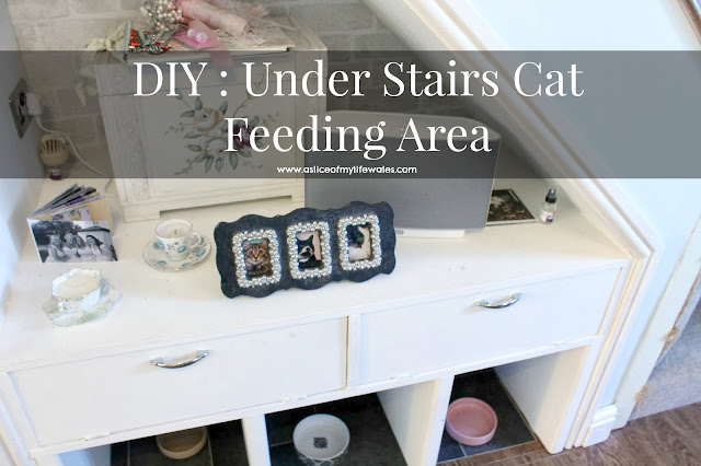 DIY under stairs cat feeding area cat feeding solution