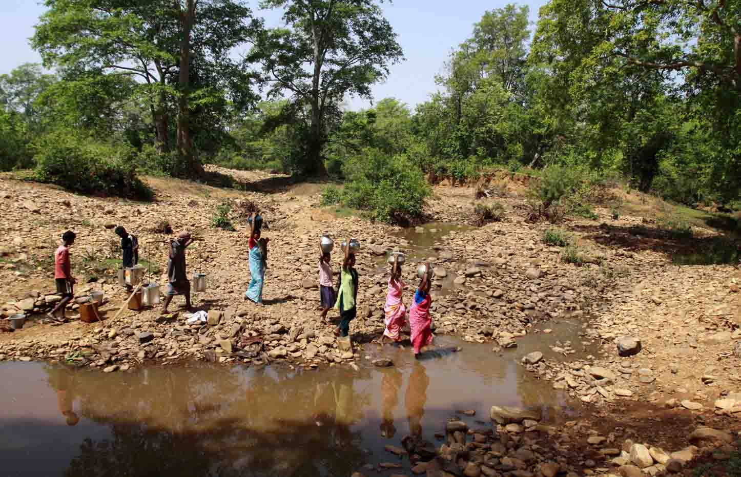 scarcity of water in india essay