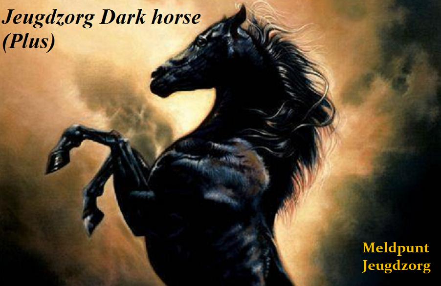 Jeugdzorg Dark horse (plus)